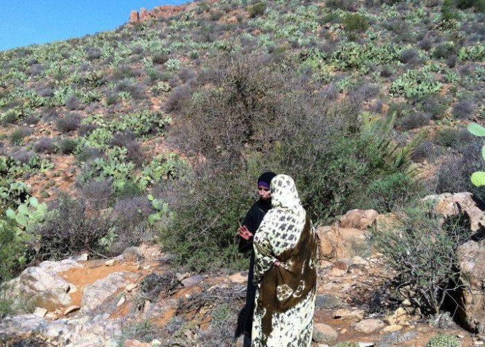 Les femmes marocaines font visiter les alentours du village de Tafraout Ben Aïch