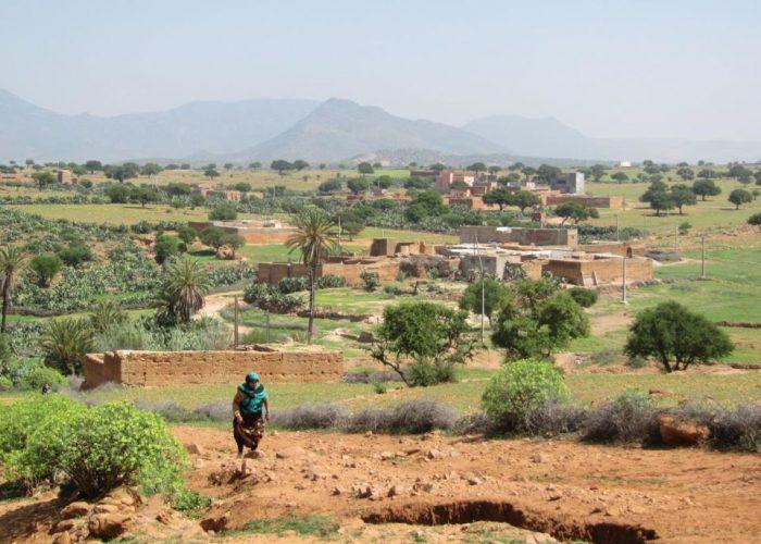 BackUp Rural visite le village de Tafraout N'Gaboune en 2012